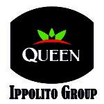 Ippolito Group